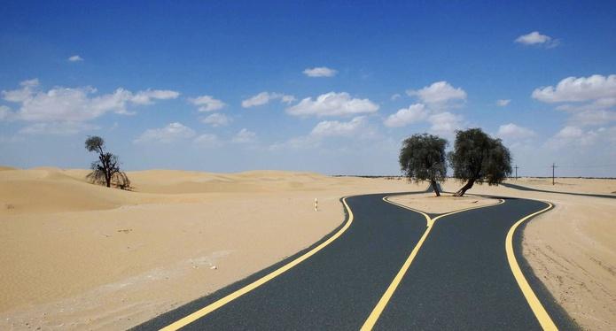 Al Qudra cycling track Dubai