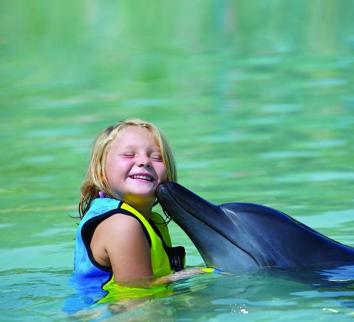 Dolphin kisses a kid