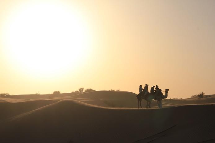 Camel ride in the desert of Dubai