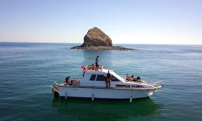 Fujairah Snorkeling
